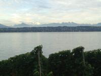 Lake Geneva Vineyards