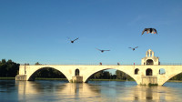 Pont Saint-Bénézet